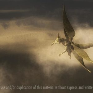 Poster: Harold, the Locust – Desert